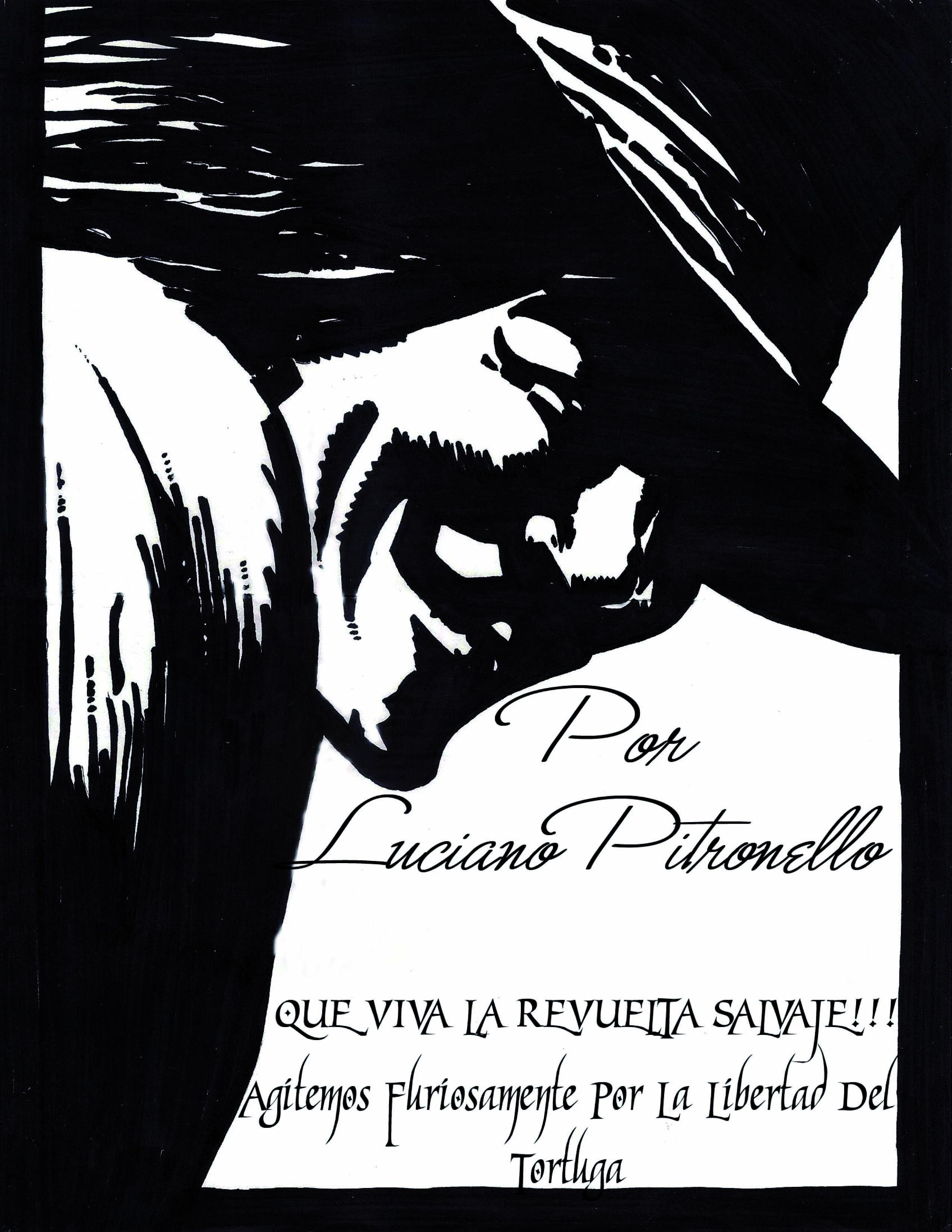 http://negratortuguitalakalle.noblogs.org/files/2012/03/tortu.jpg